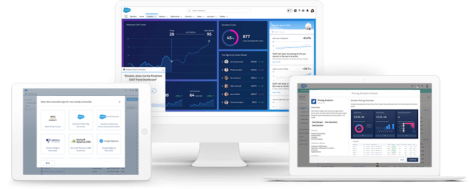 SalesForce Implementation Development Reporting